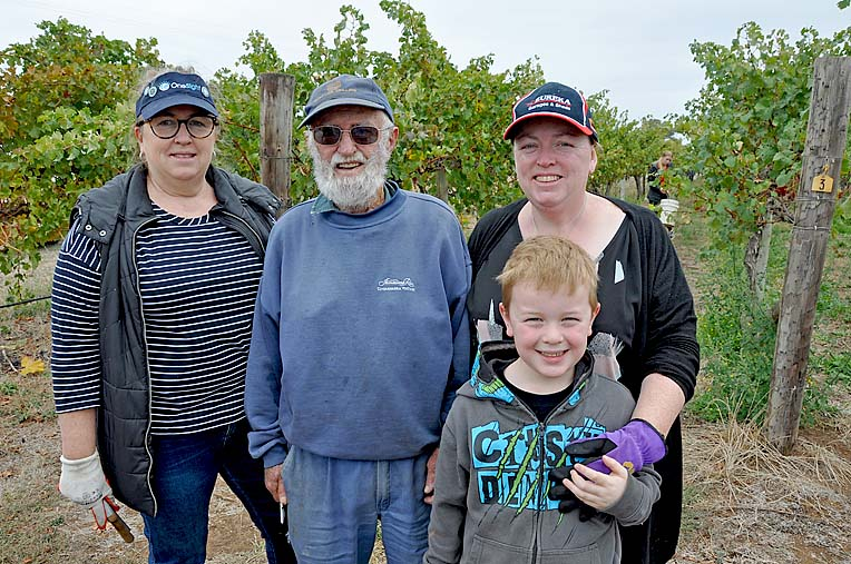 Community Volunteers Linda Breuker Bill Preston Helen Devlin And Oliver. Bill Picked Grapes For 47 Years With Mildara And Came Out Of Retirement For The Event  TBW Newsgroup