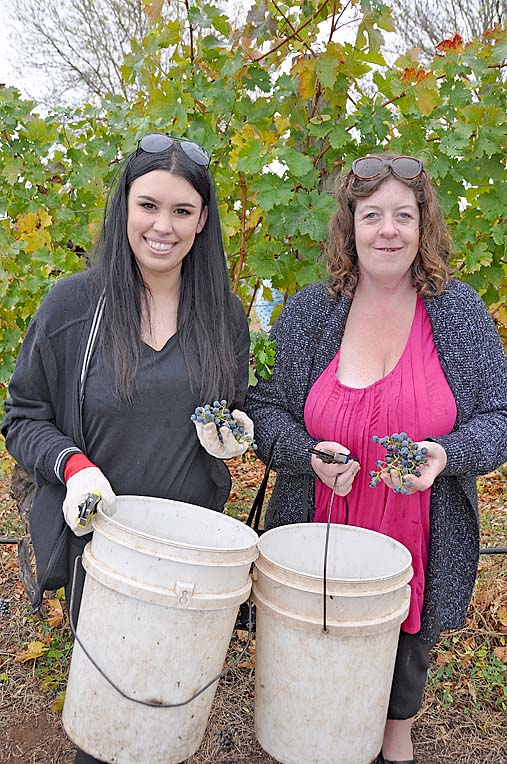 Kirsty Pearson Of Ac.care And Ac.care Volunteer Cassie Gill  TBW Newsgroup