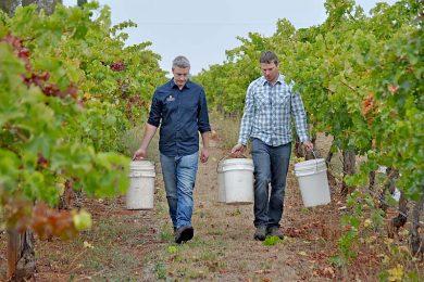 Luke Tocaciu And Steve Raidis  TBW Newsgroup