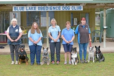 Dog Club  TBW Newsgroup
