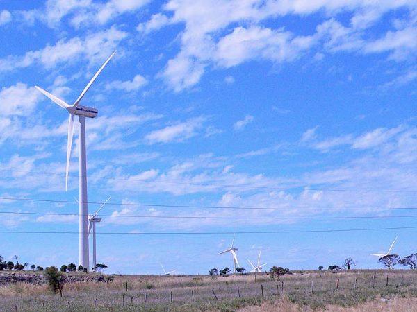 Windfarm2  TBW Newsgroup