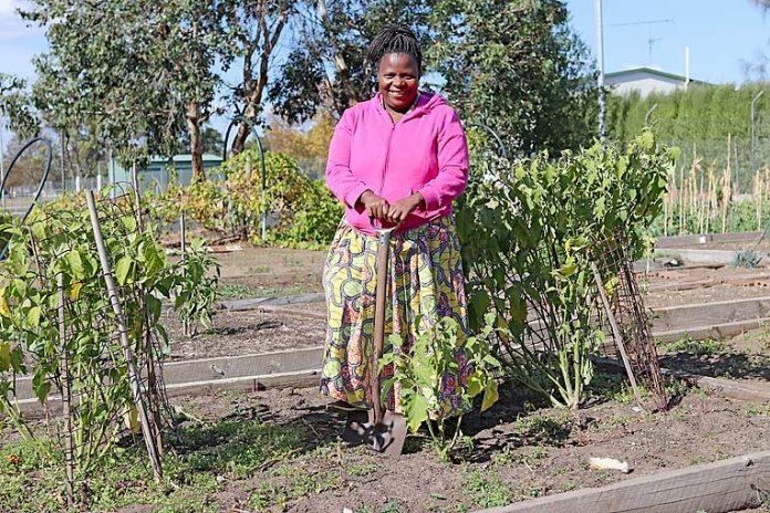 Community Garden Georgette Niyokuru  TBW Newsgroup