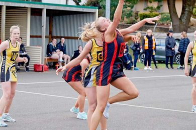 North V East Gambier Football & Netball TBW Newsgroup