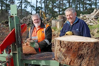 Wood Cutting Lions Malcolm Laslett And Allen Woodham  TBW Newsgroup