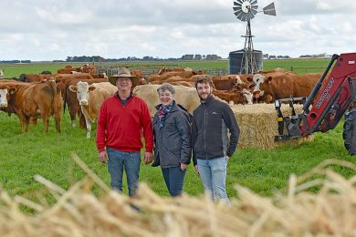Trevor Rayson, Moira Neagle And Darcy Mullens With Cows (9)  TBW Newsgroup