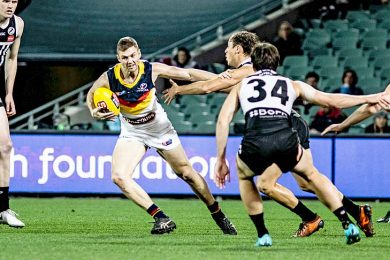 Matt Merrett Afc Media Photo  TBW Newsgroup