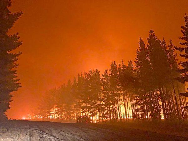 Nelson Fires 2020 Jaiden Bombski Photo (5) TBW Newsgroup