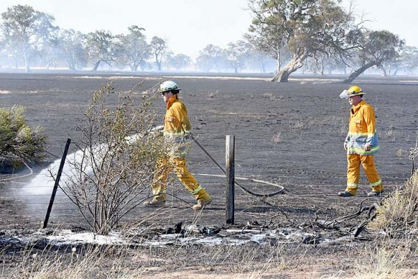 Penola Fire (3)  TBW Newsgroup