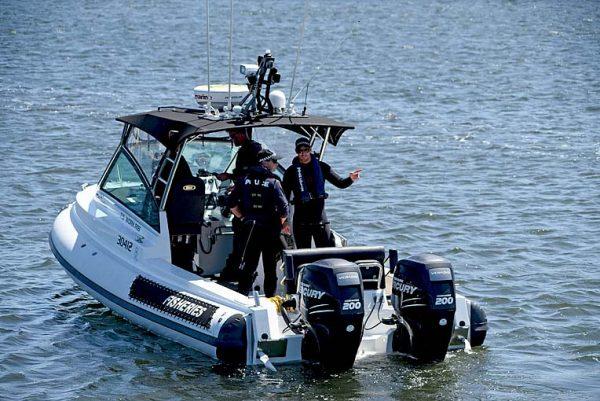 Cape Jaffa Rescueweb TBW Newsgroup