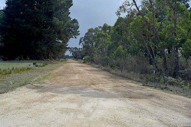 Border Road (2)  TBW Newsgroup