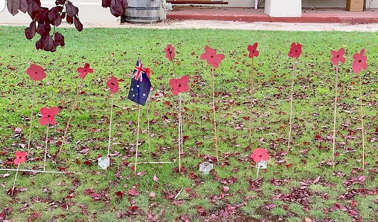 Poppies In Penolaweb TBW Newsgroup