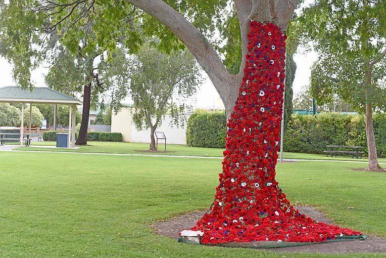 Poppy Tree Penola  TBW Newsgroup