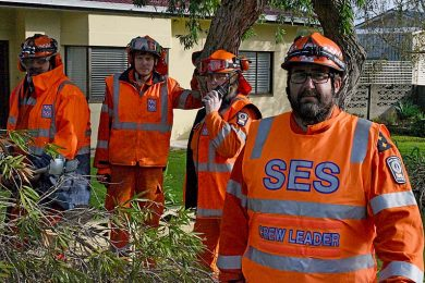 Ses Tree  TBW Newsgroup