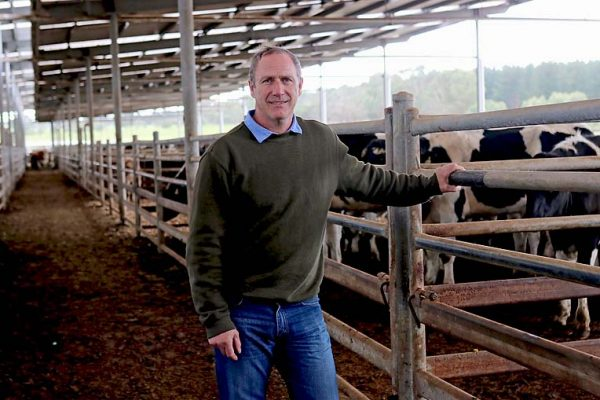 David Wallis New Saleyards Manager TBW Newsgroup